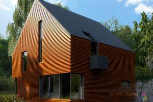 LogoDemo_Pavel_House004.RGB_color